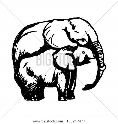 A graphic image of two elephants. The mother elephant hugging the trunk. Abstract drawing elephant on white background. Vector illustration