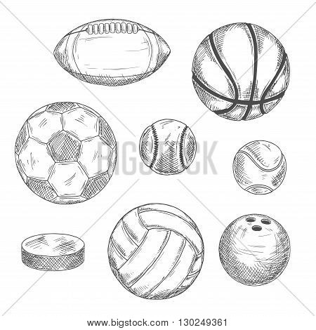 Engraving sketch drawings of sporting balls and ice hockey puck for sports competition or leisure activity design with football and soccer, basketball and baseball, rugby and volleyball, tennis and bowling balls