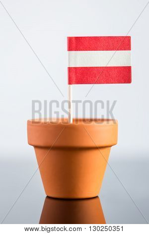 Plant Pot With Austrian Flag