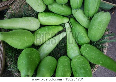stock of Bottle Gourd in the market.