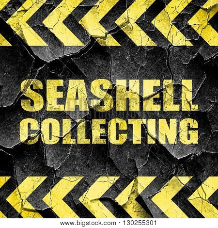 seashell collecting, black and yellow rough hazard stripes