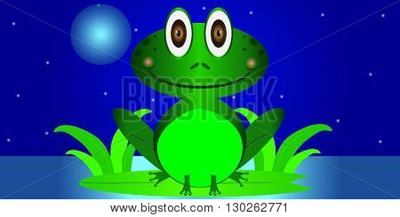 Green frog cartoon at night on a lily pad in water
