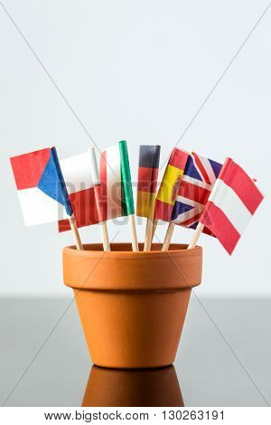 Plant Pot With Different Flags