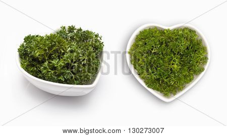 Fresh parsley   in a heart shaped bowl, isolated on white