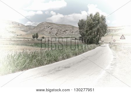 Winding Asphalt Road between Spring Fields of Sicily Retro Image Filtered Style