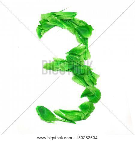 Green petals digits. Digit 3
