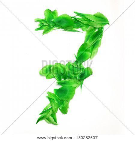 Green petals digits. Digit 7