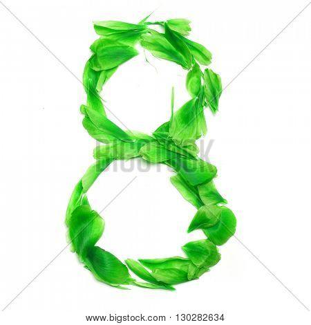 Green petals digits. Digit 8