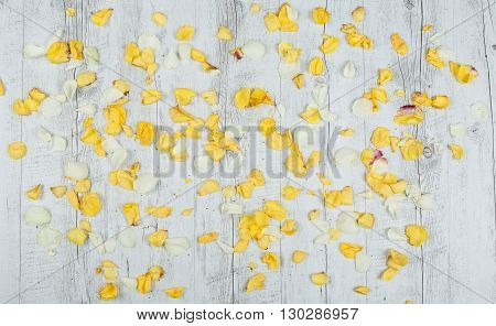 Wood background with leaves roses and nothing else