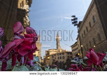 Florence Piazza Della Signoria Reflection In A Window