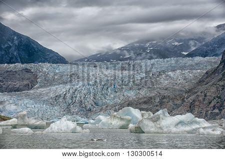 Alaska Glacier Bay Panorama landscape on cloudy day