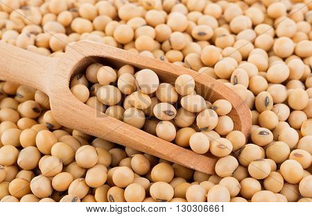 Closeup soy beans on spoon background. soy beans