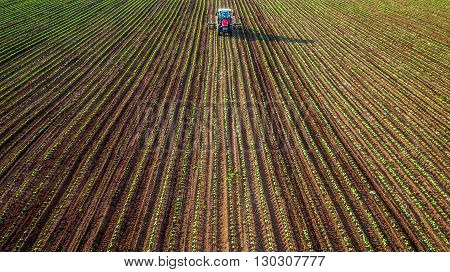 Tractor cultivating field at spring aerial view