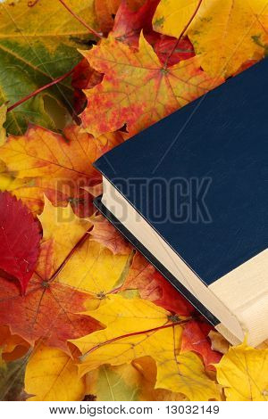 Old book laying on autumn maple leafs