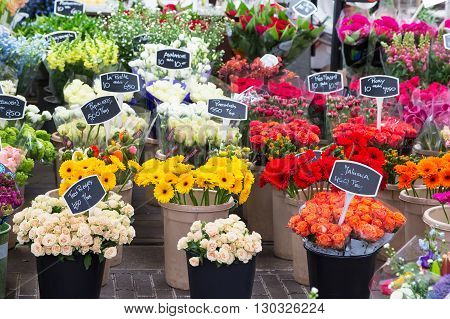 Amsterdam, Netherlands - March 31, 2016: Flowers for sale at Dutch flower market Amsterdam, Netherlands