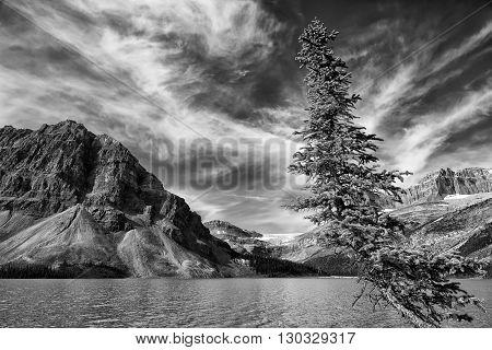 Icefield Highway Yoho Banff Jasper Park