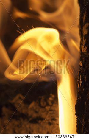 Flames On Wood Embers Detail