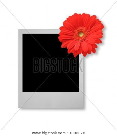 Single Photo Frame With Flower Motive