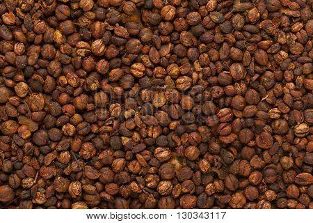Organic Black oil plant or Climbing staff tree or Malkangani or Jyotishmati (Celastrus paniculatus) seeds. Macro closeup background texture.