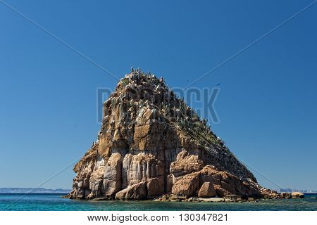 Baja California Beach Crystal Water White Tropical Paradise Panorama