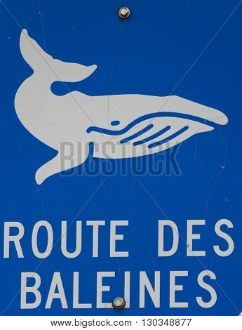 whale way sign in french in quebec canada