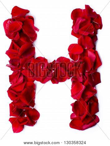 Alphabet H Made From Red Rose