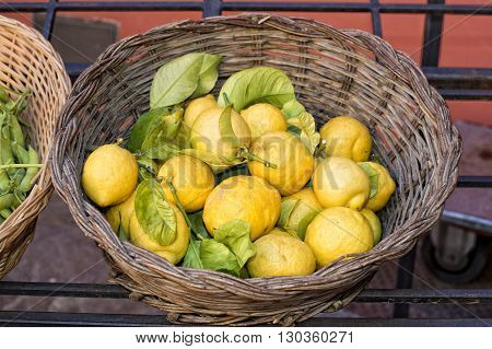 Italian yellow Lemons on display stand detail