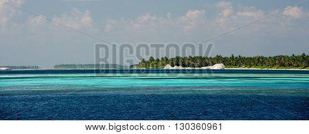 Maldives Tropical Paradise Beach Crystal Water Coconut Tree Island