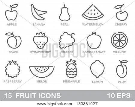 Contour stylized fruit icons. Outlines vector illustration