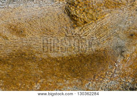 Yellowstone Hot Springs Natural Background