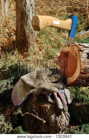 Axe In Cut Tree