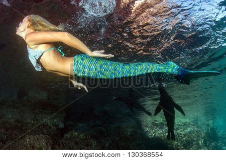 Blonde Beautiful Mermaid Diver Underwater