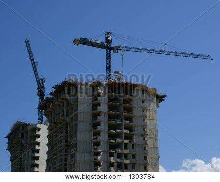 Busy Cranes