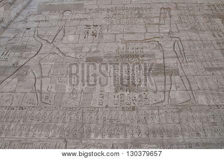 Luxor Egypt Hieroglyphics