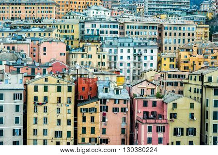 Genoa Harbor Houses Cityscape Panorama