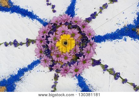 Petal And Flower Carpet For Corpus Domini Christi Celebration