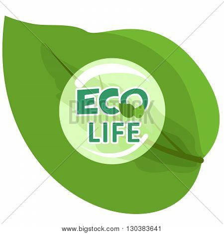 Illustration with green leaves and dew drops on the theme of eco.