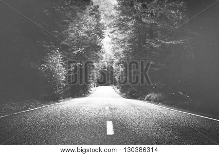 Asphalt Freedom Nature Country Road Journey Concept