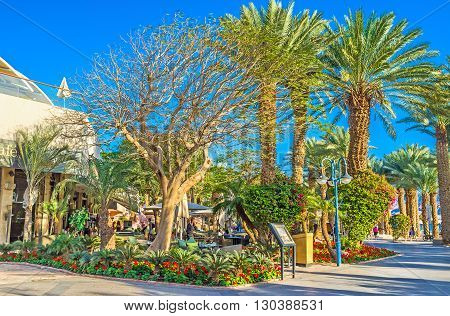 EILAT ISRAEL - FEBRUARY 24 2016: The lazy walk in the central promenade along the luxury hotels local restaurants and stores on February 24 in Eilat.