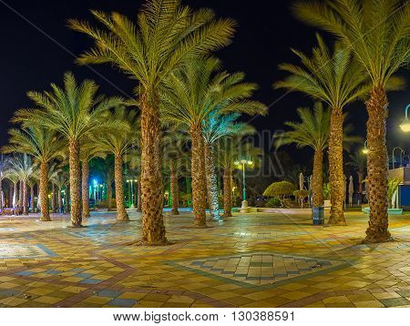 The night palm garden in central promenade of Eilat Israel.