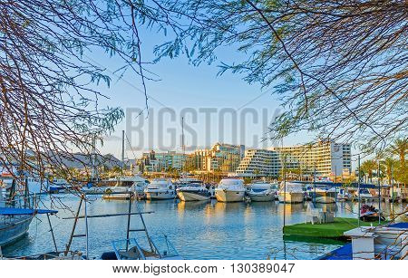 EILAT ISRAEL - FEBRUARY 23 2016: The view through the branches on the yachts in Lagoona of the luxury resort on February 23 in Eilat.