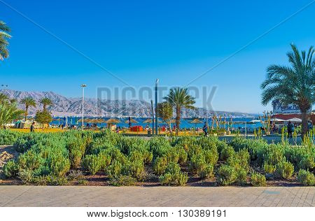 EILAT ISRAEL - FEBRUARY 23 2016: The tourist districts of the city decorated with shady parks and scenic flower beds on February 23 in Eilat.