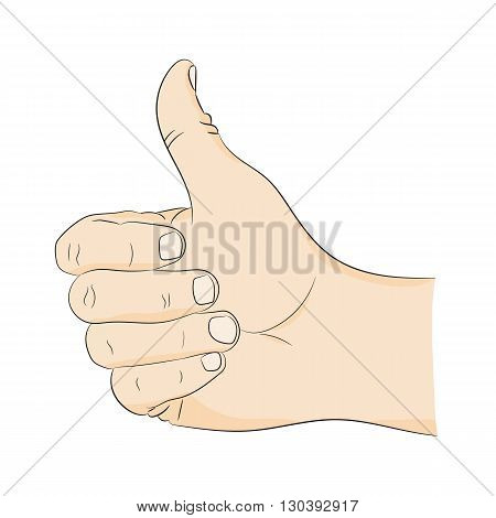 Thumbs up hand gesture approval. Picture a man's hand on a white background.