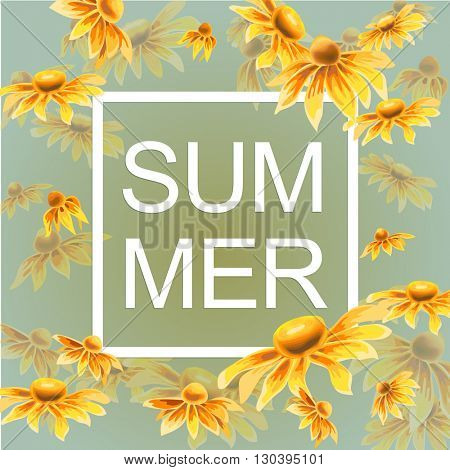Orange and yellow flowers with white paper frame and text summer on green background. Wild Echinacea flowers. Vector illustration.