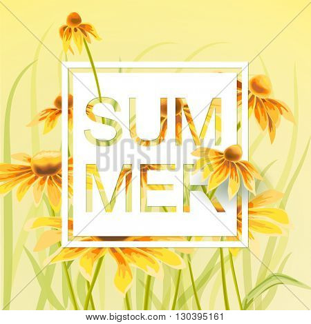 Orange and yellow flowers with white paper frame and text summer on background. Wild Echinacea flowers. Vector summer illustration.