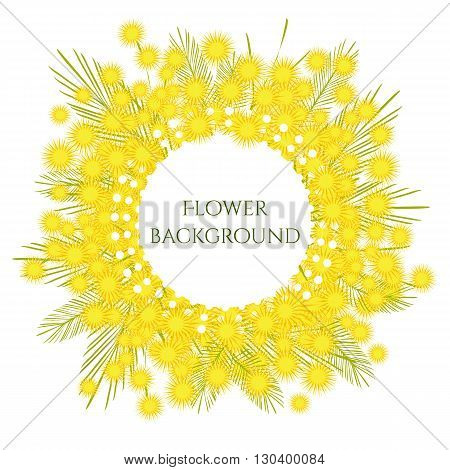 Mimosa surrounds white frame. Vector illustration. Frame with openwork edge. Spring flower background for presentation.