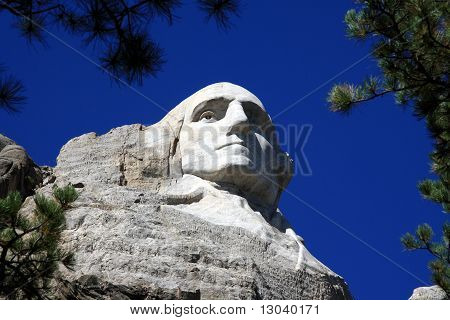 Mt. Rushmore Washington's Face