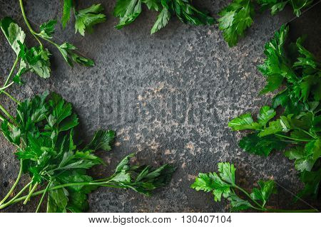 Herbs parsley on a gray slate horizontal