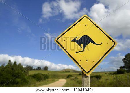 Kangaroo Wild Animal Warning On Road Sign Icon