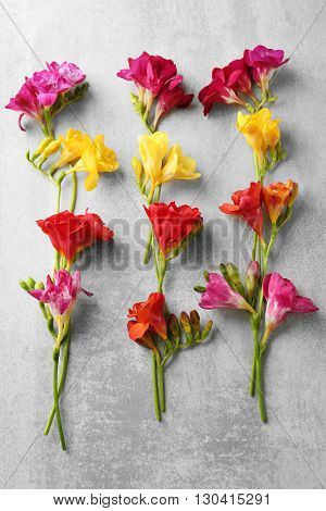 Beautiful freesia flowers on grey textured background